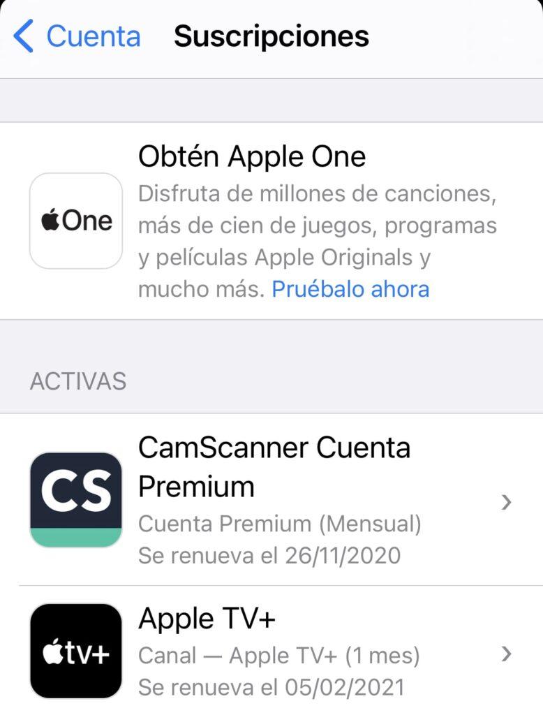 Apple One Suscripcion